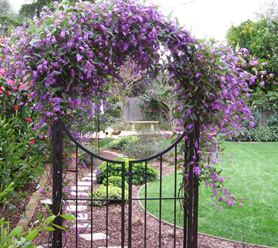 Our crew at work